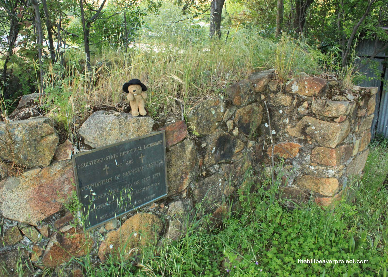 Father Rinaldi's Foundation of 1856