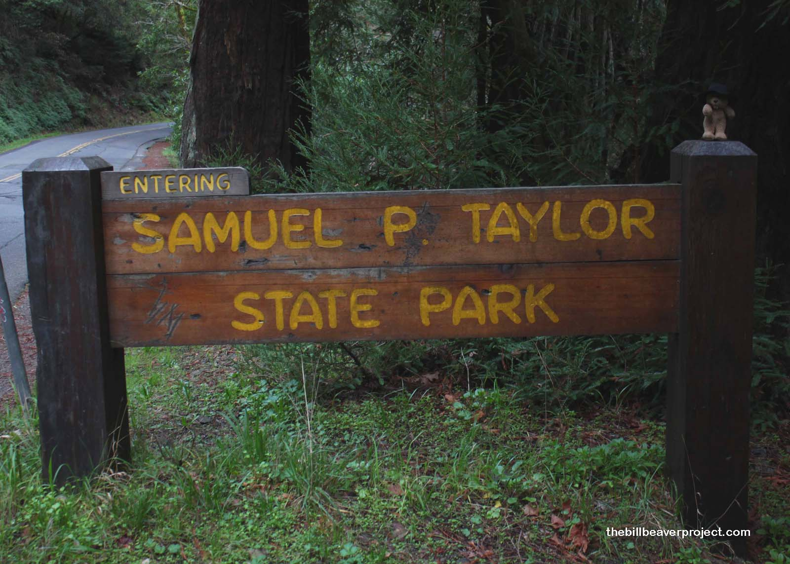 Time Being Of The Essence I Headed Westward To Samuel P Taylor State Park Home Pioneer Paper Mill Where Got Great News From My Friend